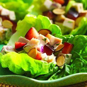 Tarragon Turkey Salad Lettuce Cups with Plums and Toasted Almonds
