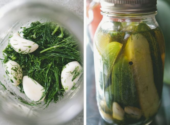 YUM! Garlic Dill Pickles @myfoodthoughts