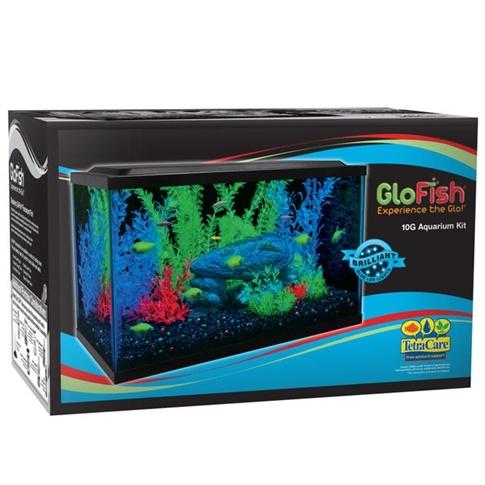 Glofish 10 gallon aquarium kit all your aquarium needs for 10 gallon fish tank kit