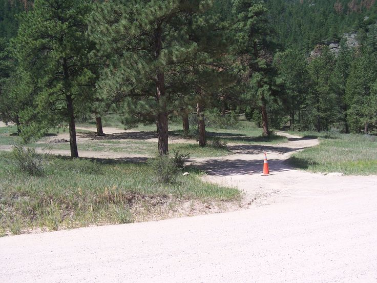 Pingree Park Dispersed Camping Campground Reviews