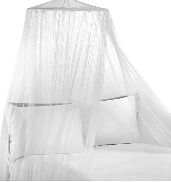 To Click Or Not To Click Canopy Over Bed And Blogging