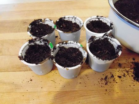Re purpose K Cups - plant seedlings for your spring garden!