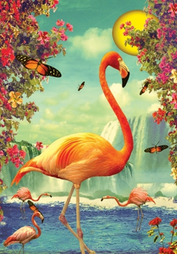 Flamingo! | You Be the Wings | Pinterest