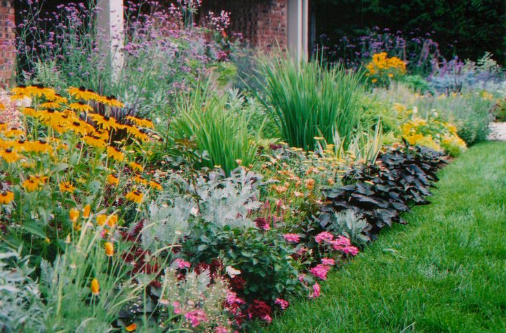 Plant layering ideas in front for the home pinterest for Wild flower garden designs