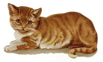 Orange Tabby Kitten Diecut circa 1880s
