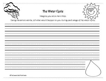 The Water Cycle Essay Paper