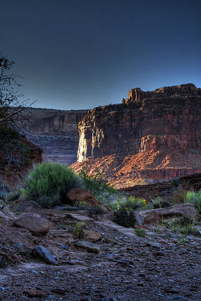 wiki canyonlands national park