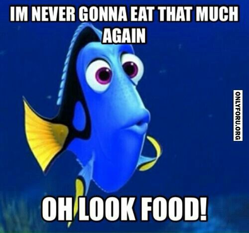 Ate too much funny quotes quotesgram for Can i eat fish everyday