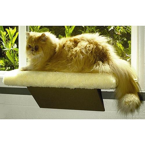Product further Files myopera   lonleycat albums 3258172 thumbs cats window   thumb further Cat Window Perch further Workbench furthermore 111971405121. on cat window perch