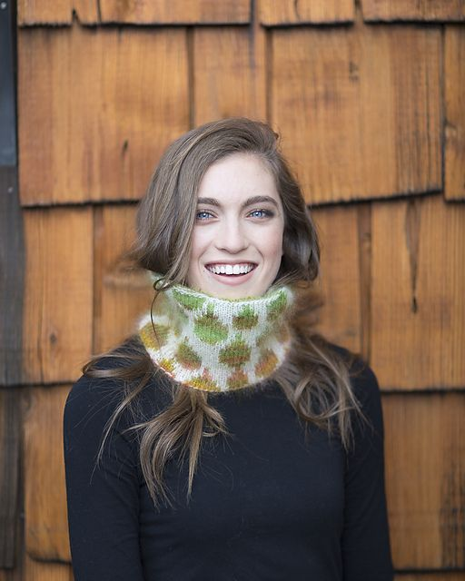 Ravelry: Double-Knit Cowl pattern by Gwen Bortner from Stitch Mountain by Laura Zander