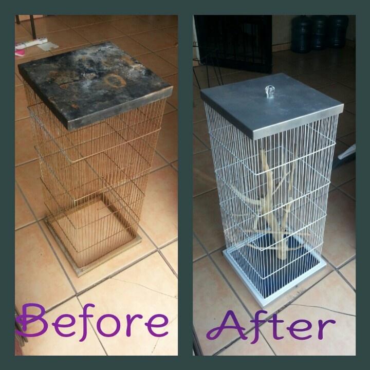 Bird Cage Revamped Redone Birdcage Diy Backyard Birding