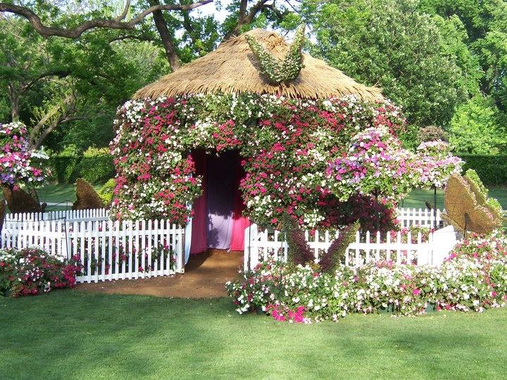 Dallas Botanical Gardens Outdoor Ideas Pinterest