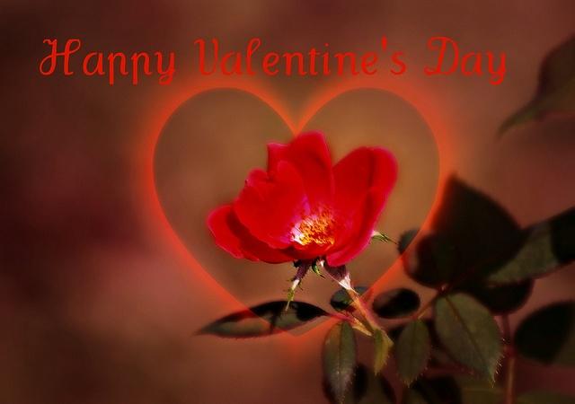 14 february valentine's day wiki