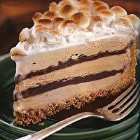 mores Coffee and Fudge Ice Cream Cake by Bon Appétit