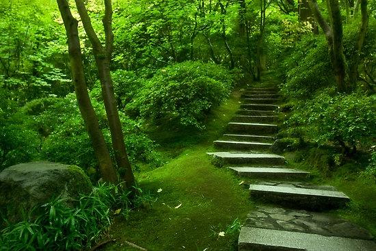Portland Japanese Gardens Portland Oregon