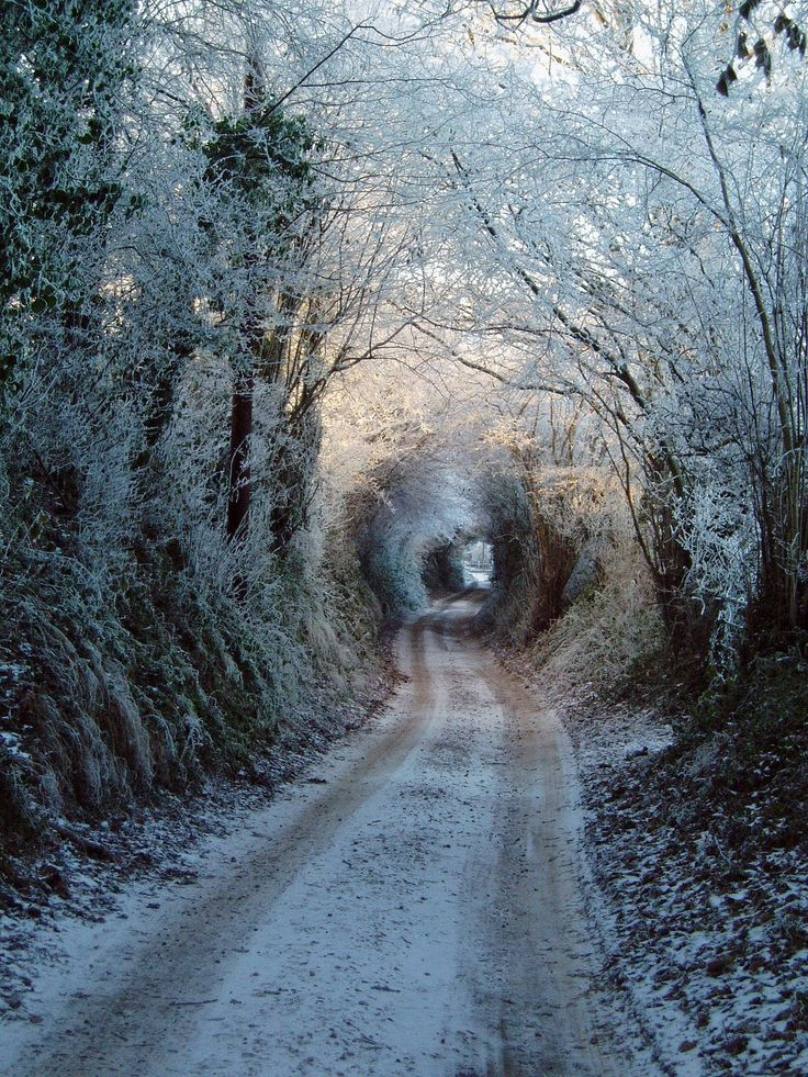 road path tracks snow - photo #31