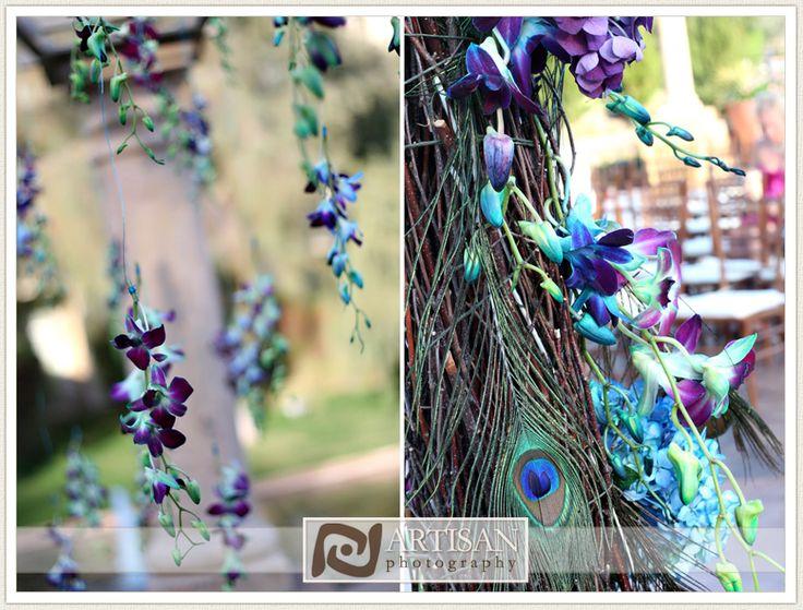 Peacock Feather Wedding Theme Peacock Pinterest