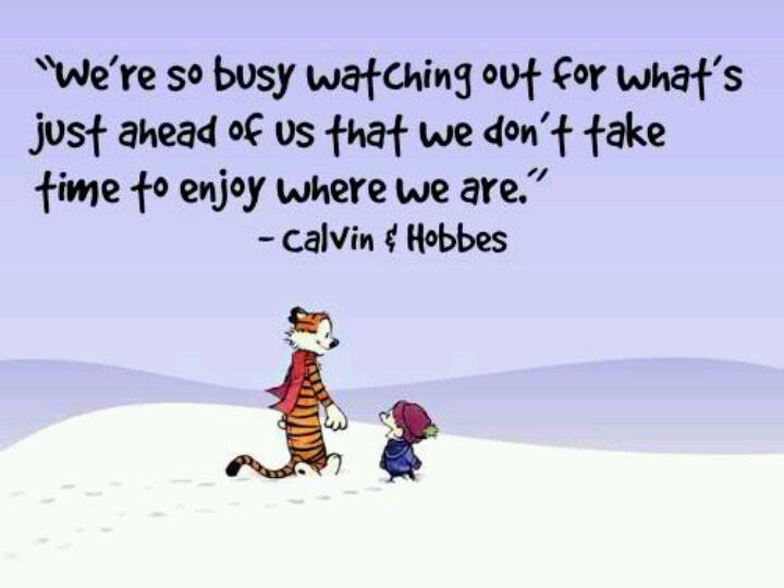 Calvin And Hobbes Friendship