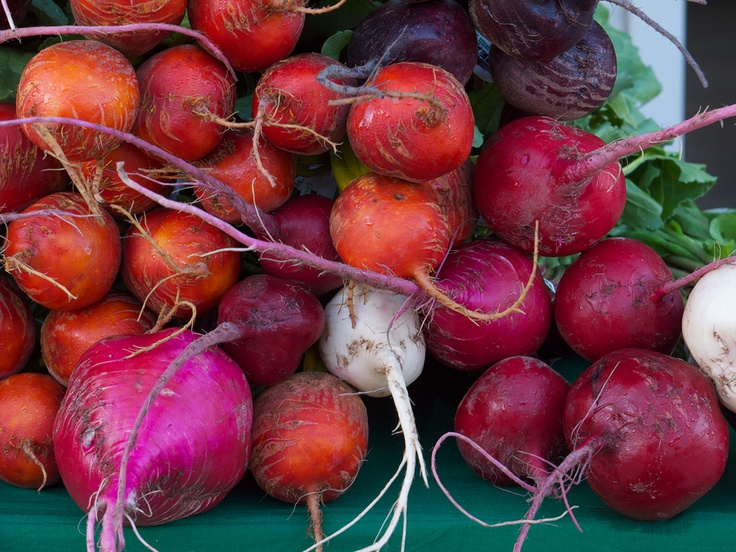 Pickled Beets | Canning, Preserving and Homesteading | Pinterest
