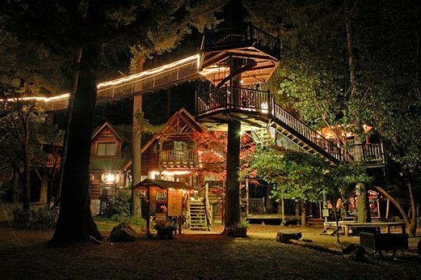 Cabanes luxe dans les arbres