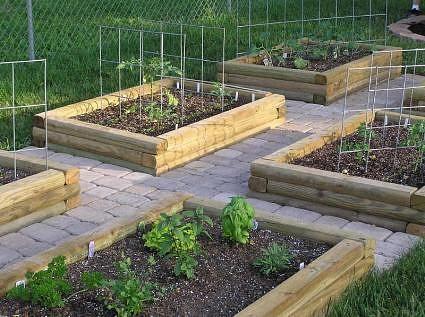 Vegetable Gardening - Excellent Info!