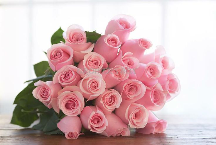 Fundraising with flowers is a great way to generate much needed revenues for schools, churches, clubs and other organizations. Flowers are especially popular for Valentine's Day and Mother's Day. Whether you need just 100 stems to sell to friends and family or 10,000 stems to sell to your entire university, The Grower's Box can help! Visit us online at www.GrowersBox.com.