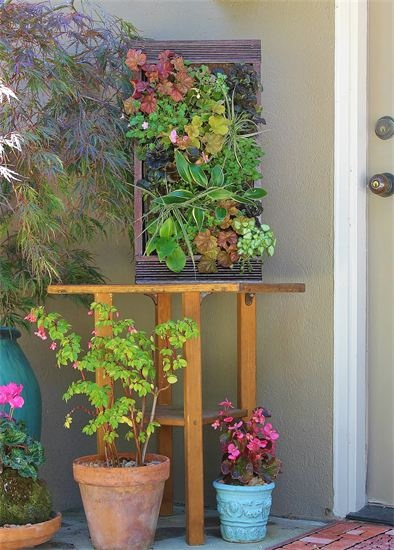 Vertical Garden Plantasy A Portfolio Pinterest