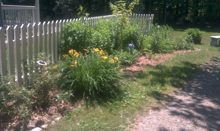 Picket fence made from pallet crates garden pinterest for Pallet picket fence