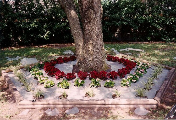 Landscaping Ideas Around Oak Trees : Around oak trees outside ideas
