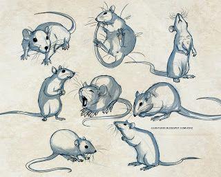 evil rats drawing