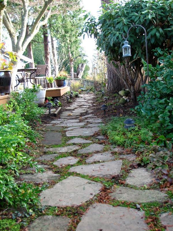 Shade For Sunny Backyard : Sunny day medicine  Shade Garden  Pinterest