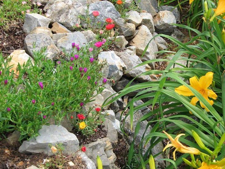 Drainage Ditch Landscaping | Landscaping Ideas > Landscape Design ...