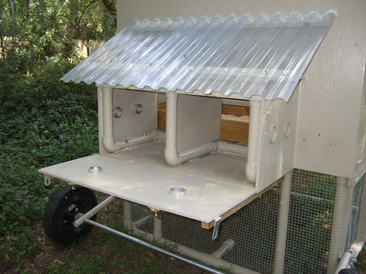 Pvc chicken coop backyard chickens and roosters pinterest for Chicken coop made from pvc