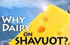 shavuot why eat dairy