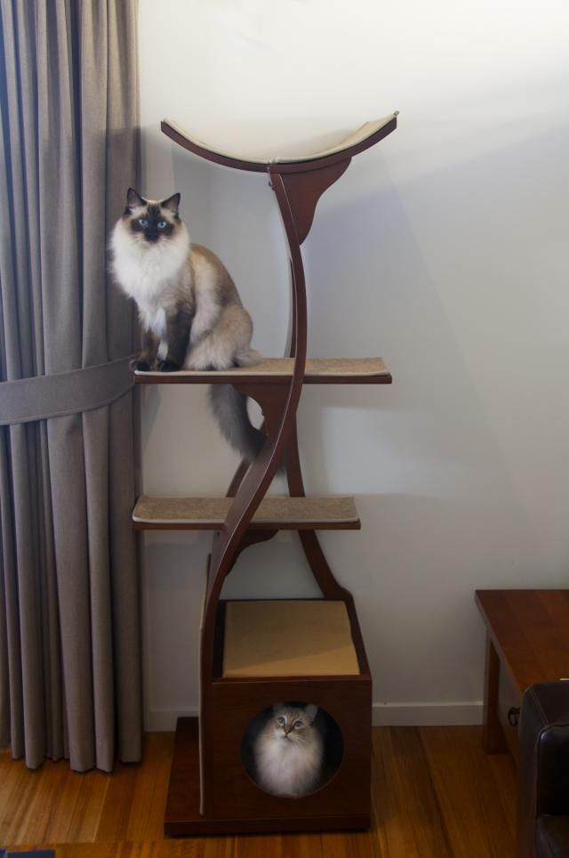 stylish cat tower home small spaces pinterest