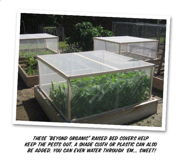 Raised bed pest cover Garden Style Pinterest