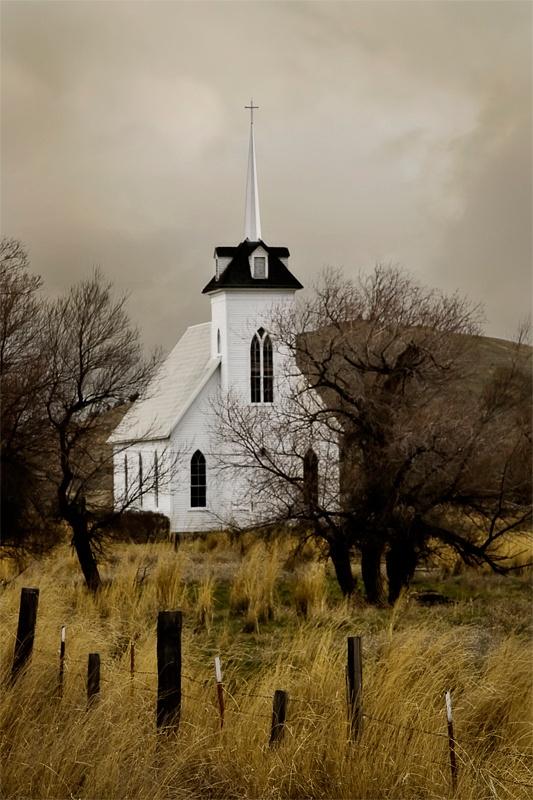 Little Shasta Church II