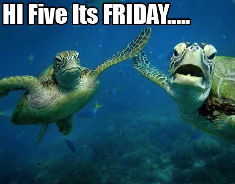 Have a great weekend this n that fun stuff pinterest