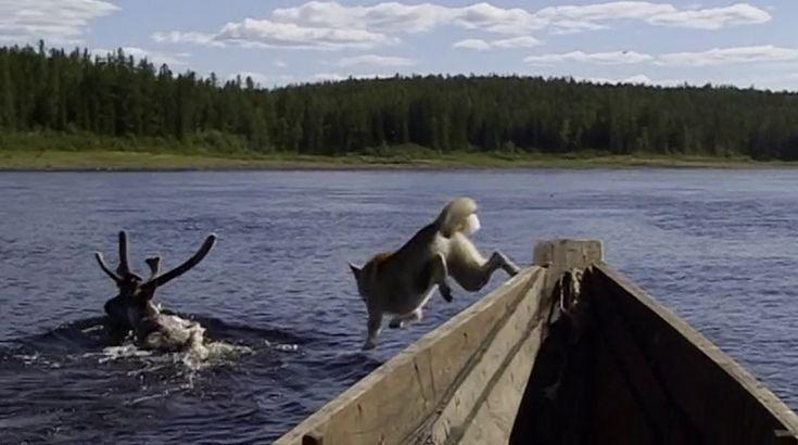выживание рыбалка охота енисей тайга бахта фильм сибирь