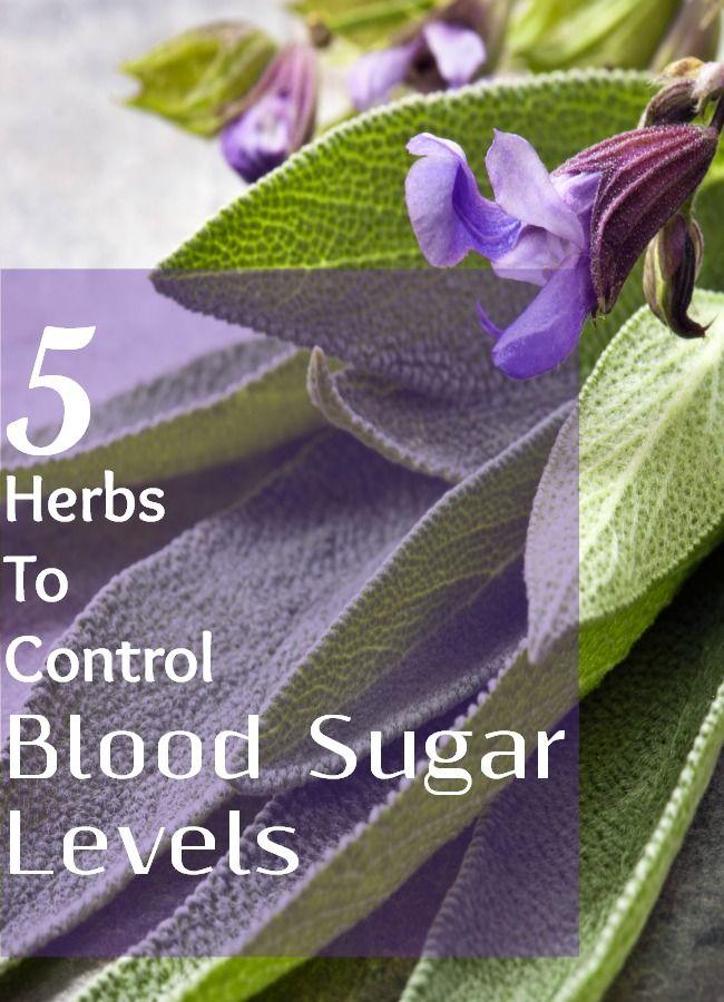 Herbs for blood sugar control