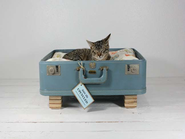 Diy cat bed simba pinterest for Homemade cat bed