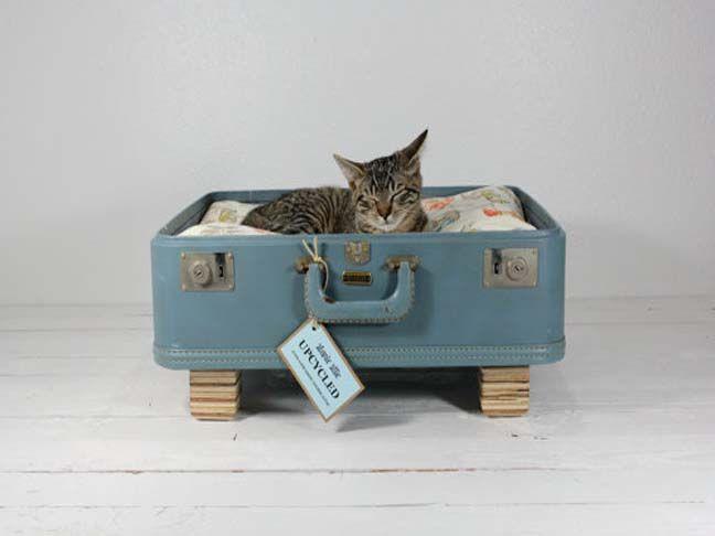 Diy cat beds the image kid has it for Diy cat furniture