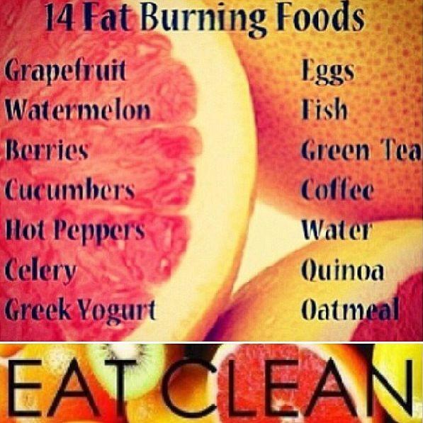14 foods that burn fat zone