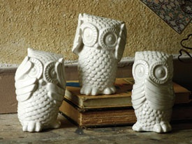 owls. Should have bought them at Marshall's today