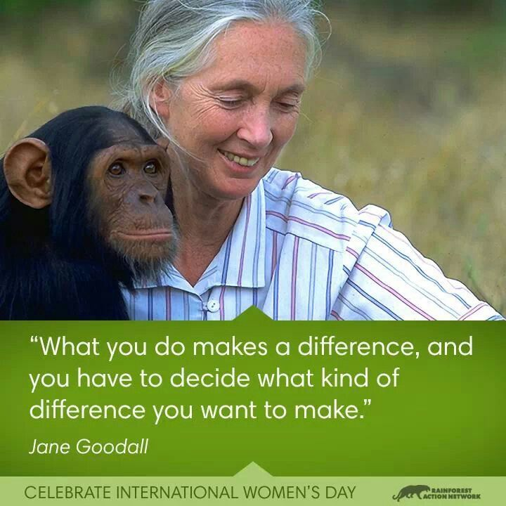 Jane Goodall A1 Quotes Pinterest