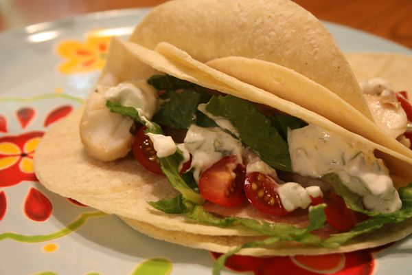 Cilantro-Lime Marinated Fish Tacos   cooking ideas   Pinterest