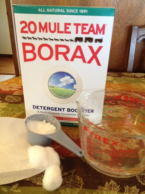 how to get rid of ants with borax around the home pinterest. Black Bedroom Furniture Sets. Home Design Ideas