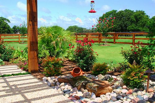 landscape designs argyle texas