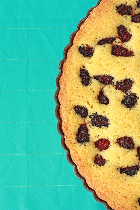 blackberry cornmeal cake | kitchen heals soul