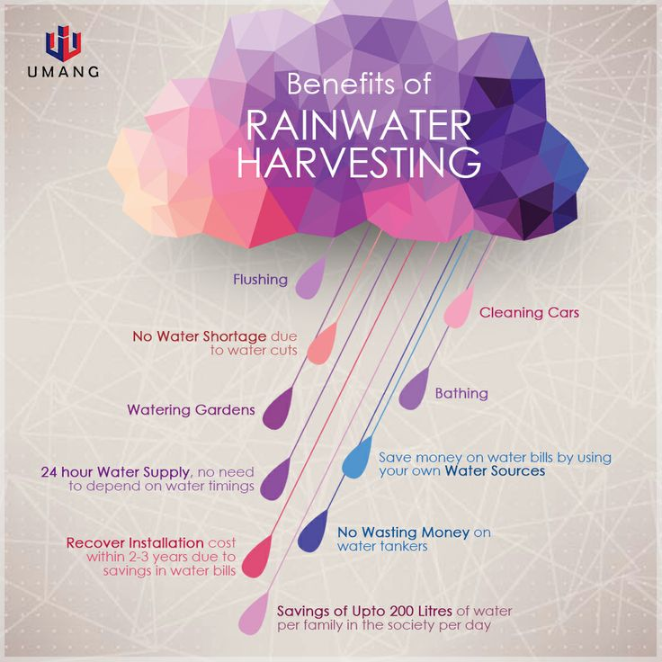 rainwater harvesting system thesis